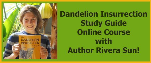 DI-Online-Course-Page-Banner
